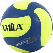 Volley Ball amila 41631